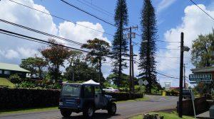 AVIS Gutschein auf Hawaii