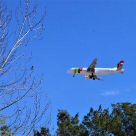 Fliegen mit TAP Air Portugal – Ab ins Warme